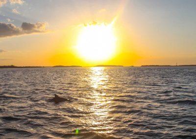 Amelia Island Sunset Cruise-9280