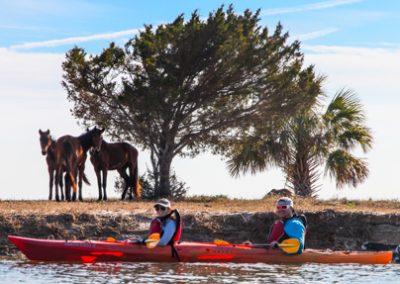 Cumberland Island Kayak Tour