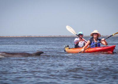 Cumberland Island Kayak Tour 16x9-9960