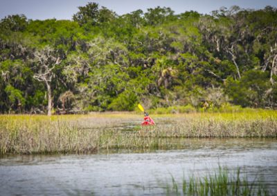 Egans Creek Kayak Tour Amelia Island-0049