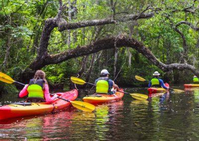 Lofton Creek Kayak Tour 16x9-1853