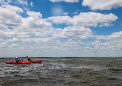Amelia River Kayak Tour